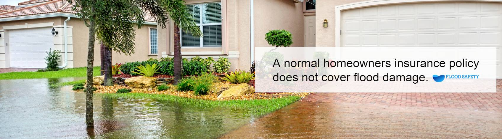 Flooded House Cleanup